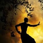 Discipline Marital Arts
