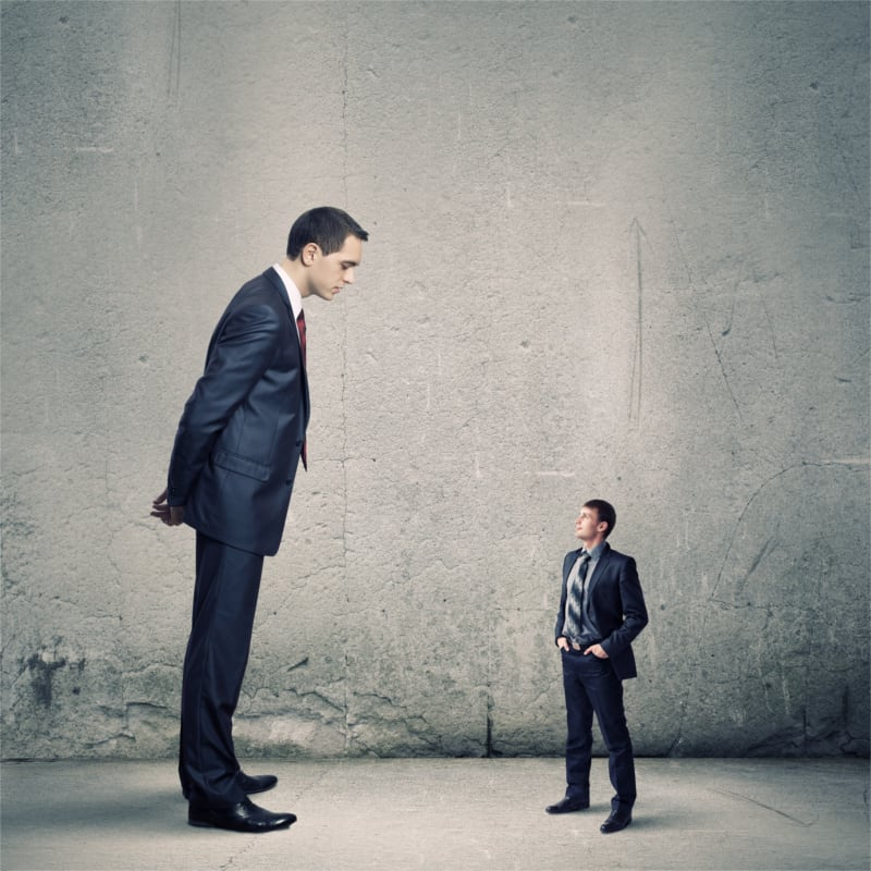 Leading a Small Business vs. Large Organizations